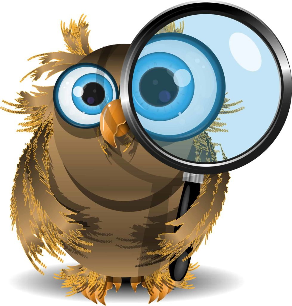 image of owl with magnifying glass