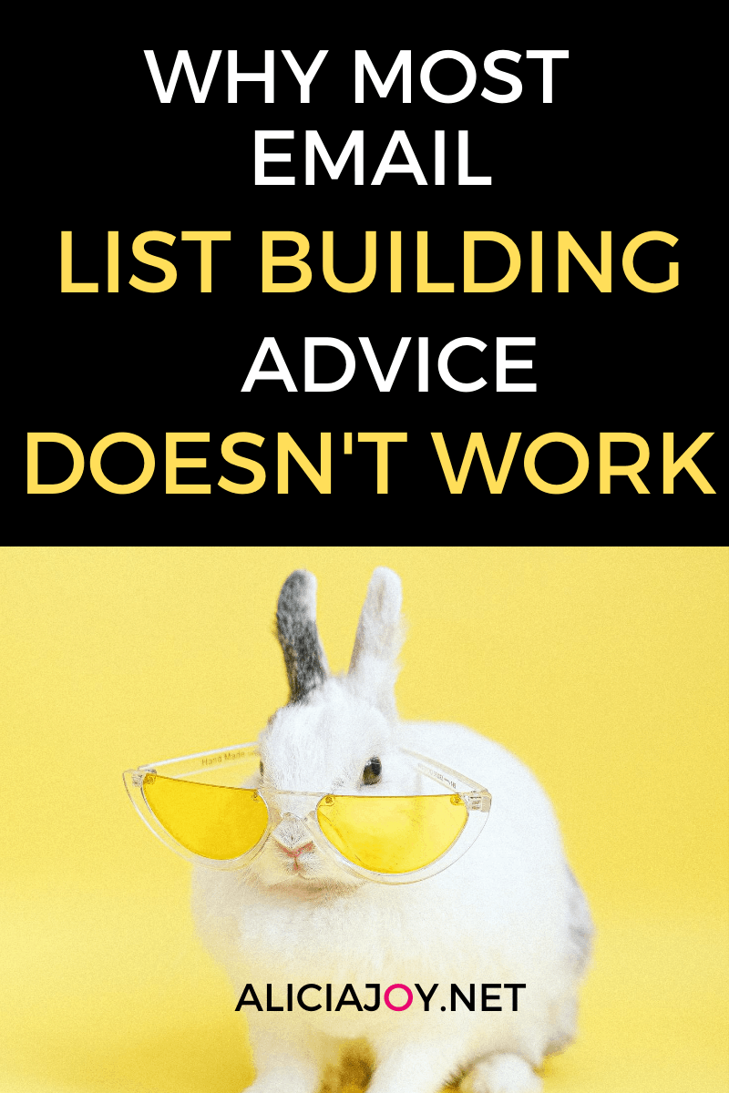 image of text box why most list building advice doesn't work